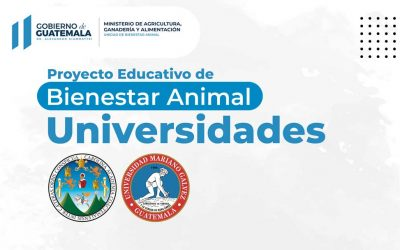 Bienestar Animal – Universidades