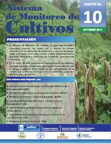 cultivo10
