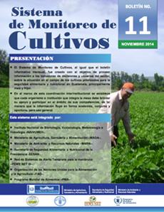cultivo11